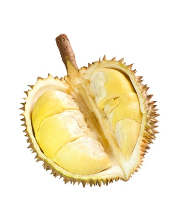 Durian fruit isolate on white photo