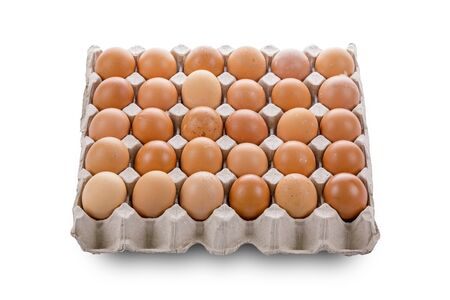 Eggs packing isolate on white background
