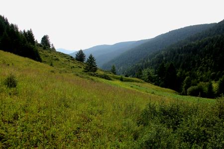 hillside: Hillside Stock Photo