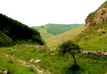 hillside: Scenery at the hillside Stock Photo