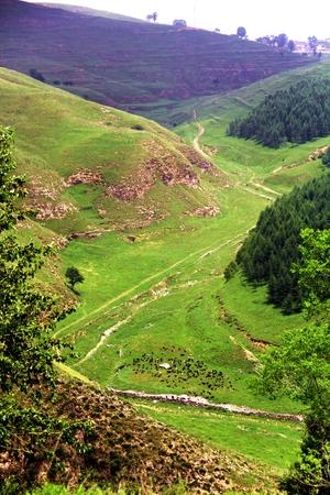 Scenery at the hillside Stock Photo