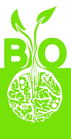 vertical orientation: Green and white BIO concept, vertical orientation, light green sprout with white roots Illustration