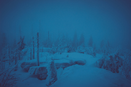 winter landscape in the mountains in bad weather, fog, darkness 写真素材
