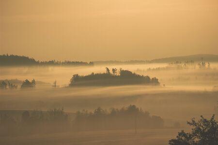 Sunset Field Fog Landscape. trees rising above the fog