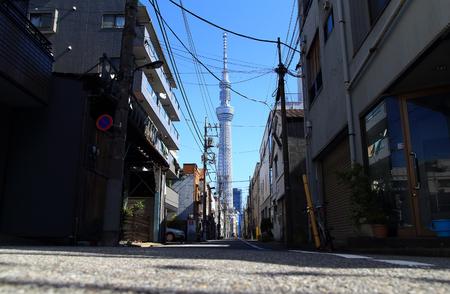 residential street: Tokyo residential street with Tokyo Skytree