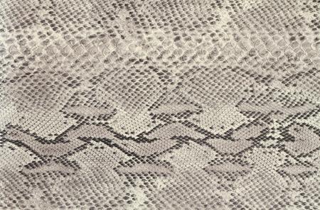 Achtergrond slangenhuid