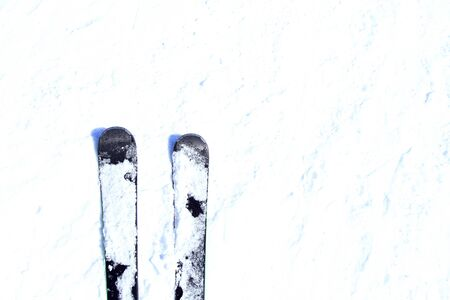 Black skis on fresh powder snow