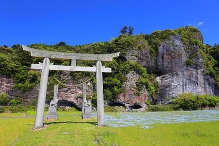 torii: Nemophila and Torii