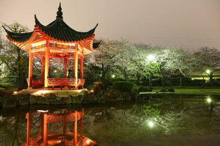 Cherry tree and pond