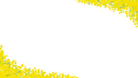 """Mimosa hand drawn vector frame. """"white background"""""""