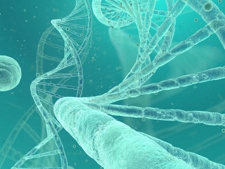 adn humano: Imagen DNA Foto de archivo