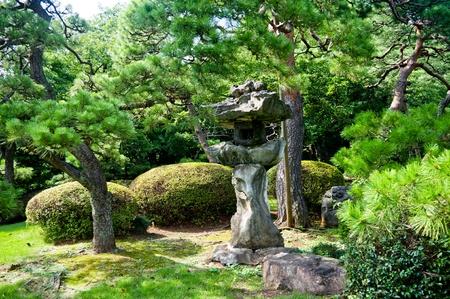 back yard pond: Japanese garden