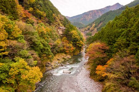 cascade range: Autumn leaves and river in the mountains. Stock Photo
