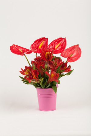 anthurium and alstroemerias flower  photo