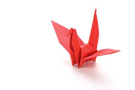 origami paper: Red origami paper bird.