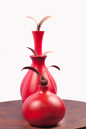 decorative objects: Red Vase