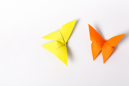 withe: colourful origami butterfly paper on withe background.