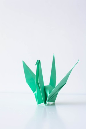 origami bird: Green origami bird on white background. Paper origami bird handmade.