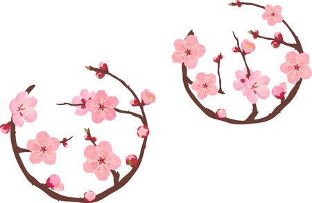 The circular of plum blossoms Stock Vector - 138033951