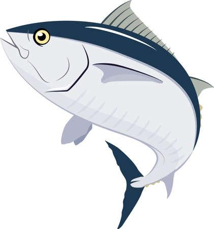 Vectorillation of tuna. #02