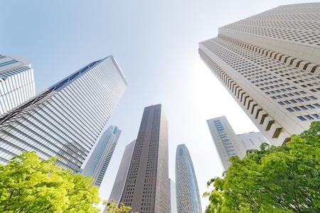 新宿高層ビルと青空の新緑 写真素材
