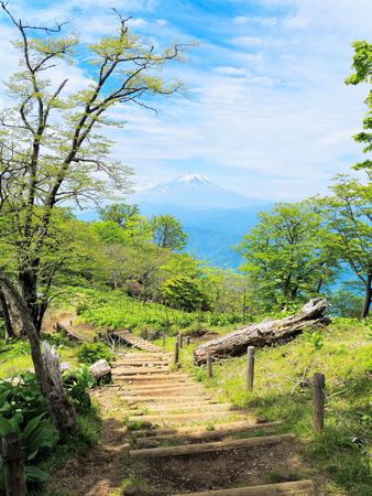 Mount Fuji seen from hinokibora tanzawa and walkway