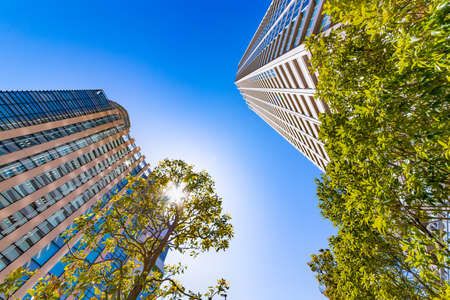 Blue sky, fresh green and high-rise buildings