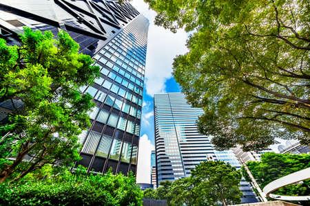 Shinjuku High-Rise Buildings in the Morning