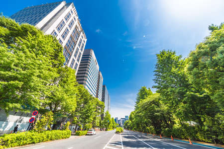 New Green and Buildings in Tokyo