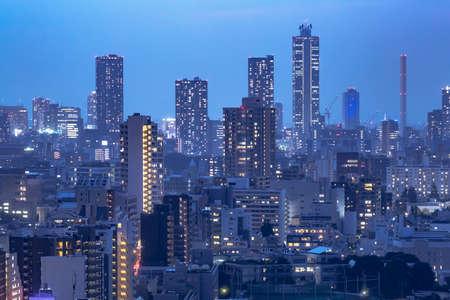 Night view of Tokyo urban area