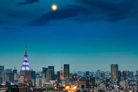 Night view of Tokyo from Shinjuku high-rise building