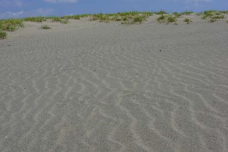 dune: Nakatajima Sand Dune