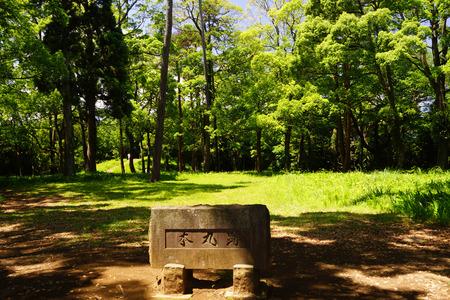 odawara: Ishigakiyama overnight Castle Historical Park