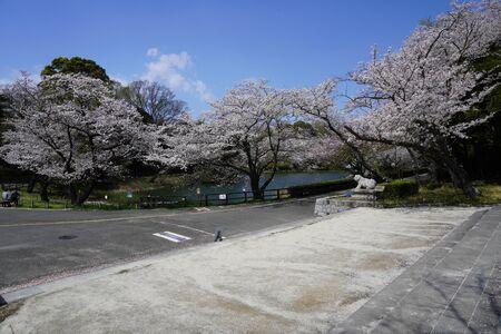 Prefectural Mitsuike Park
