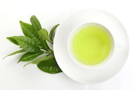 Japanese green tea and fresh green tea leaves on white background