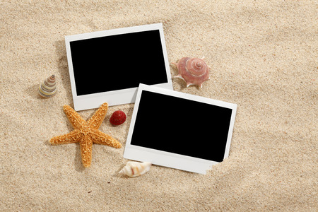 Sandy beach background with starfish and shells collection and blank instant print picture.