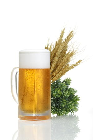 barley malt: Beer and hops and wheat Stock Photo