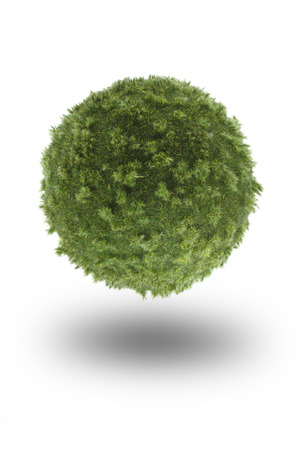 緑のボールは、白い背景で隔離の草で作った。苔ボール