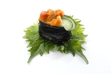 urchin: Japanese seafood sushi sdabdachung urchin Stock Photo