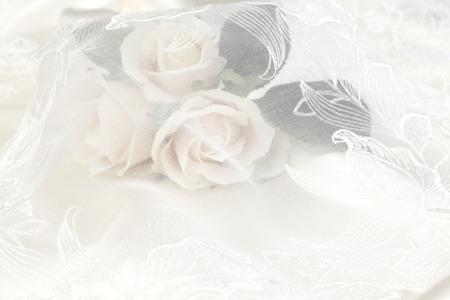 Bruiloft kant achtergrond met roze roos