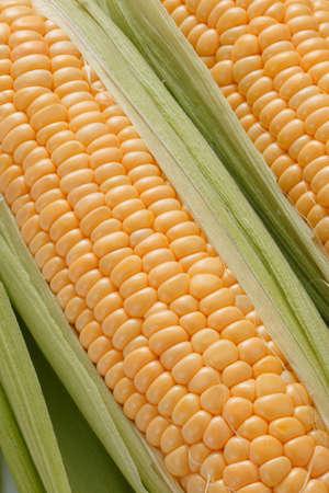 yellow corn: Fresh corn