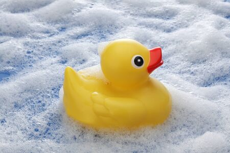 pato de goma: Yellow Rubber Duck on Foam