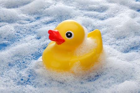 rubber duck: Yellow Rubber Duck on Foam