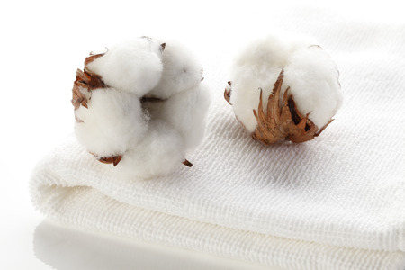 Cotton flower on cotton towels 스톡 콘텐츠