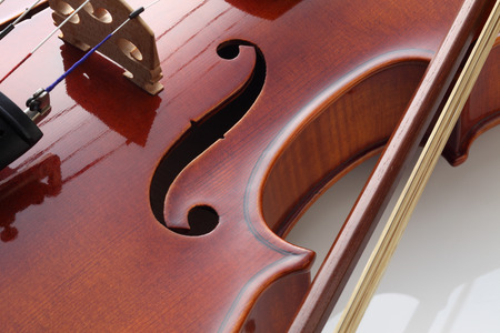 Violin isolated on white background 写真素材