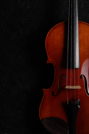 A violin on a dark background. Stock Photo - 101608985