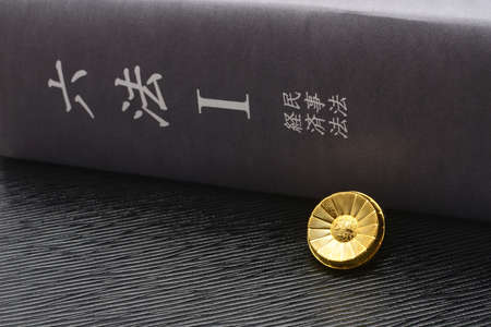 Judicial Image: Lawyer Badges and Imitations of the Dictionary of Six Laws