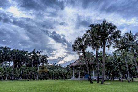 lumpini: Morning at Lumpini Park in Bangkok Thailand