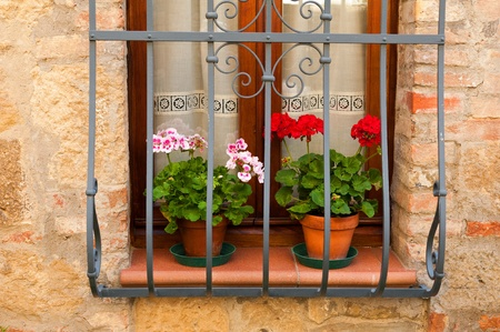 monticchiello: There are many delightful buildings in the village of Monticchiello in Tuscany   Some of them have lovely details such as the flowers on this windowsill