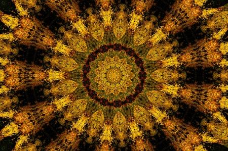Processed as a kaleidoscope of autumn landscape